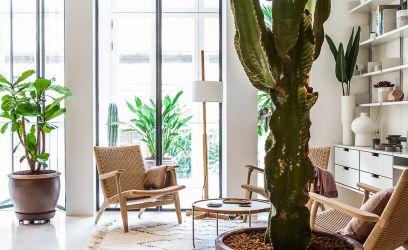 Ilyen, amikor az északi minimalizmus találkozik a mediterrán bujasággal
